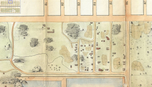 Detail from Egbert Viele's 1856 topographical survey of the area to become Central Park, which shows some of the buildings and gardens of Seneca Village just before its destruction.